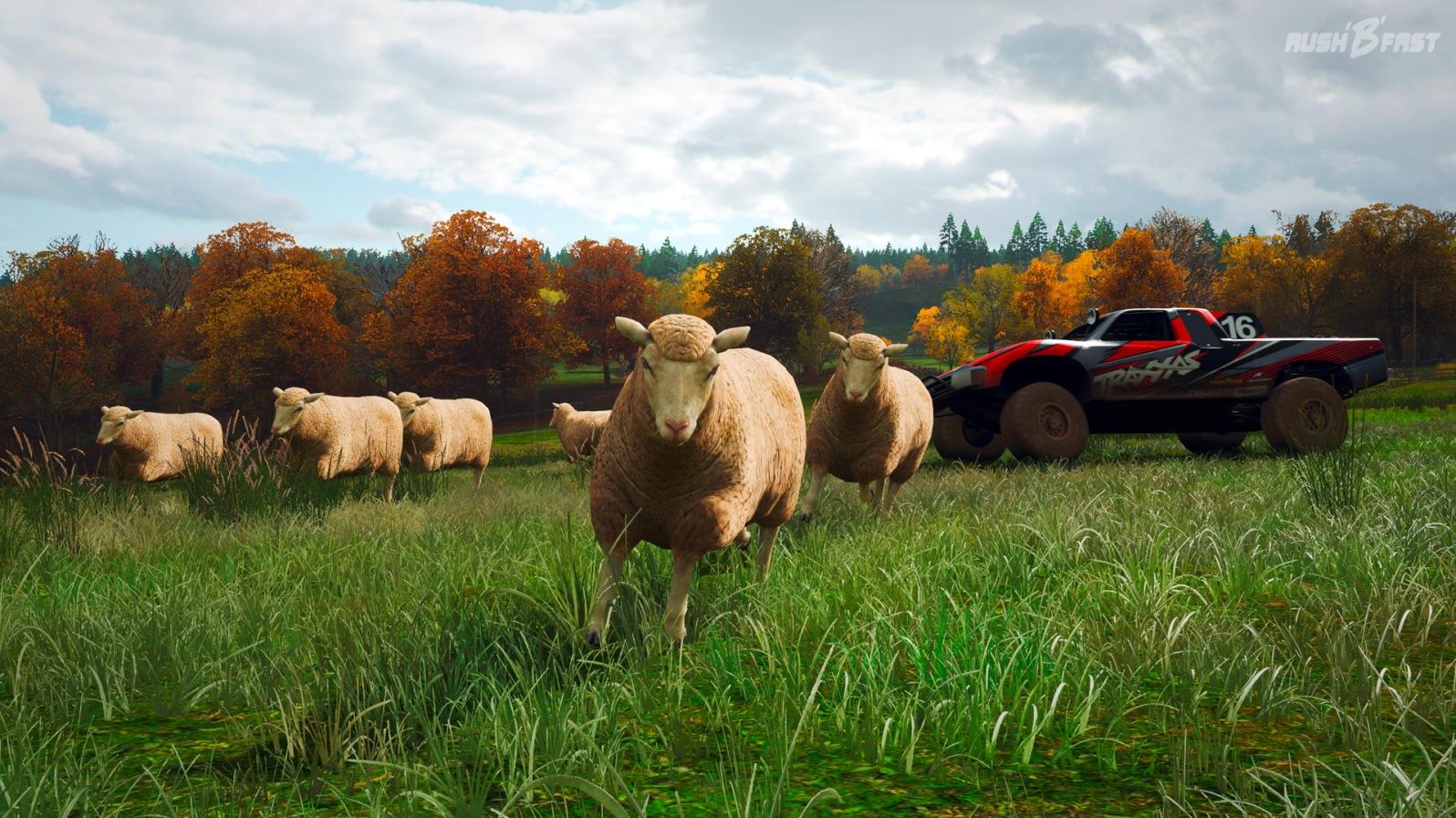 Forza Horizon 4- Querfeldein-Rennen