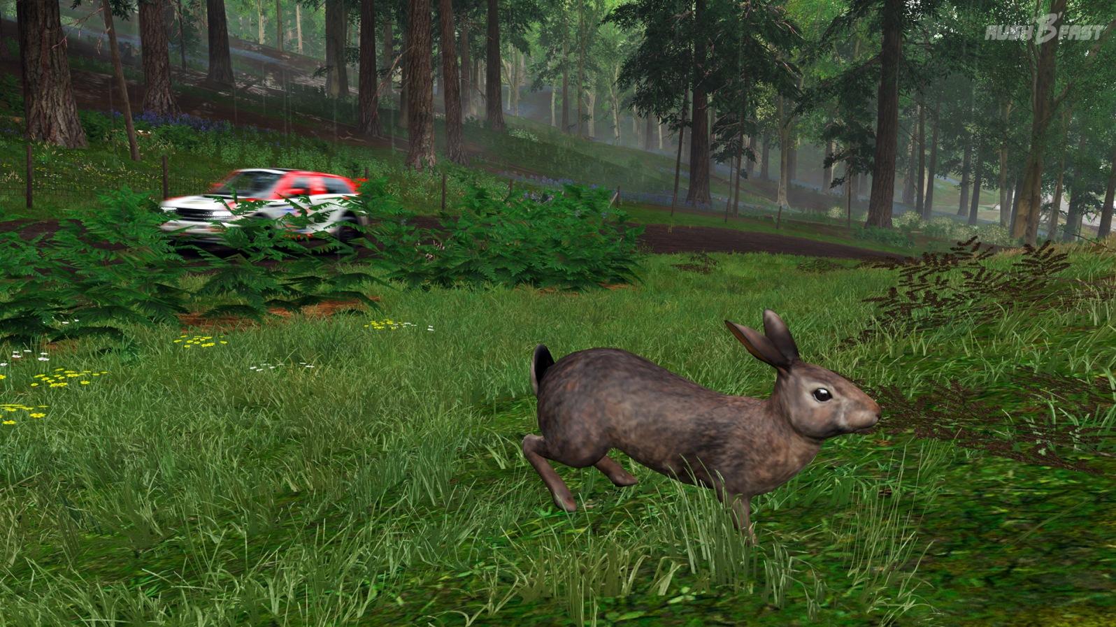 Forza Horizon 4 - Hase